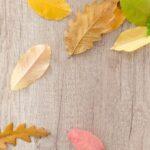 Quel bijou porter pour la saison de l'automne ?
